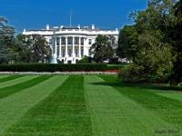 1 - La Maison Blanche