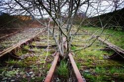 Le-Rail-abandonné