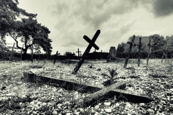 Les Aliénés de Mayenne abondonnés