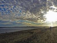 promenade dans la baie de Somme 1