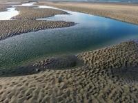 promenade dans la baie de Somme 2