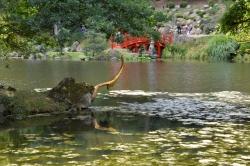 La corne d'or - Jardin Maulevrier