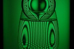 Un petit vert
