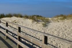 Passerelle dans les dunes