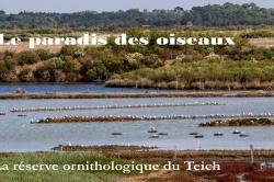 Le-Teich-09