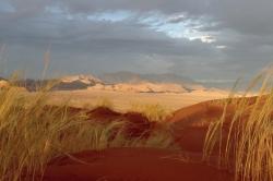 Régine J. - Désert du Namib 01