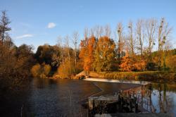 Fin d'automne sur les rives de la Mayenne