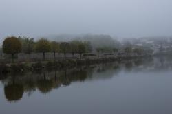 paysage dans le brouillard_li