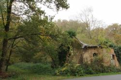 Bâtisse en ruine en forêt aux couleurs de l'automne
