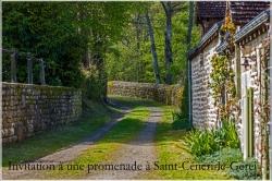 Promenade à Saint-Céneri 10