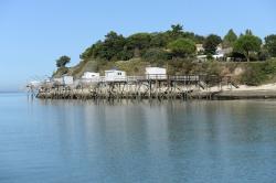 Les Pêcheries de Meschers-sur-Gironde